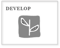 box_develop